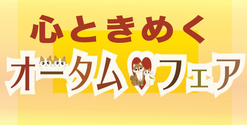 オータムフェア開催!!