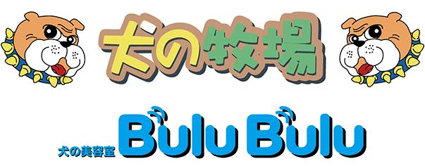 犬の美容室 Bulu Bulu
